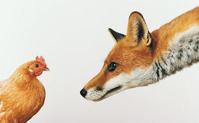 Sermon: The Fox and the Hen