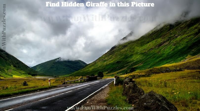 Picture Puzzle to find hidden Giraffe