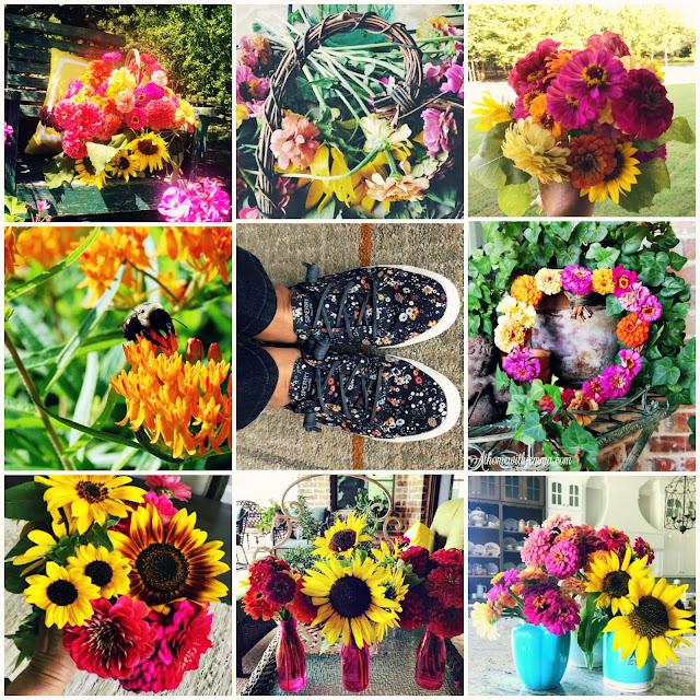 gardening-with-jemma