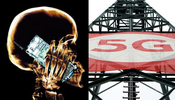 Una catástrofe global dicen los activistas sobre las redes 5G.