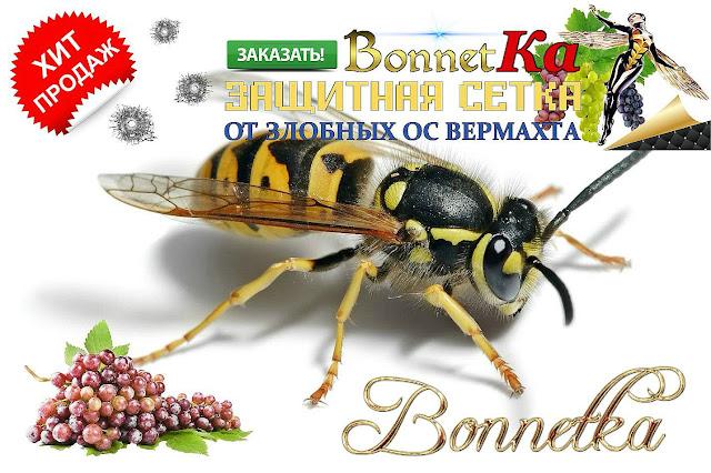 Мешочки против ос для винограда купить в Украине, 0957351986, 0985674877,  Bonnetka