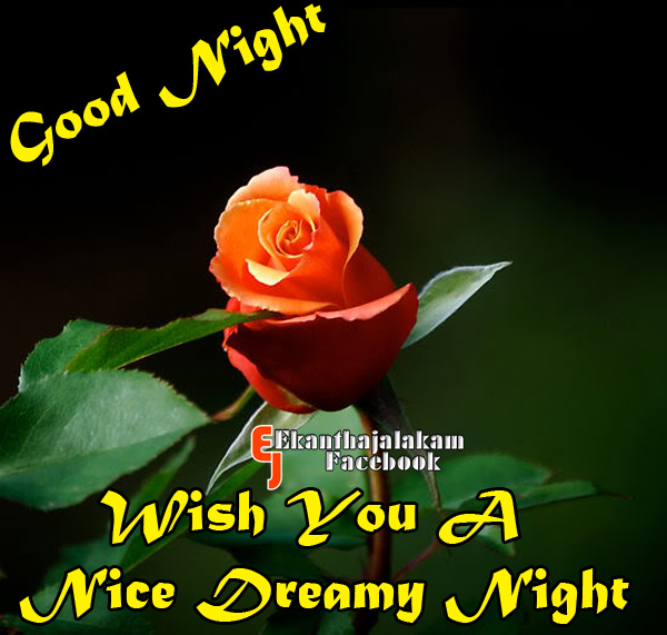 Nice Good Night Quotes With Images: Lovely Quotes For You: Wishing You A Nice Night And Sweet