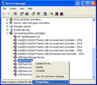 USB Root Hub