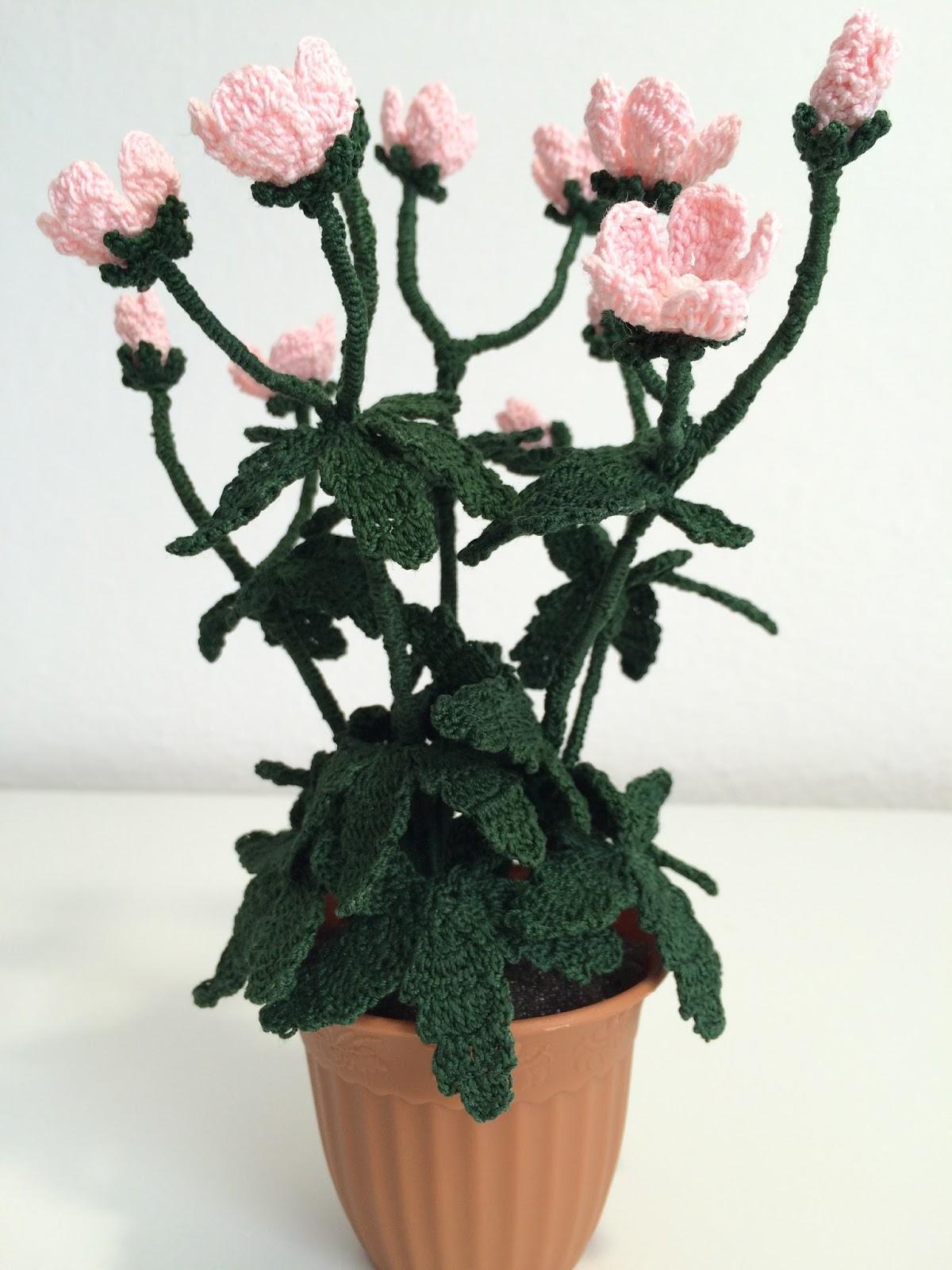 Il blog di sam how to crochet a geranium for Il blog di sam piante grasse