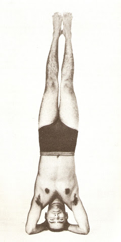 yoga for joy and peace the worst part of a bad headstand