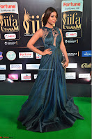Shriya Saran in Beautiful Transparent Dark Gown IIFA Utsavam Awards 2017 058.JPG