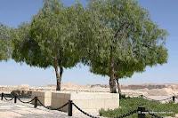 Ben-Gurion`s Grave