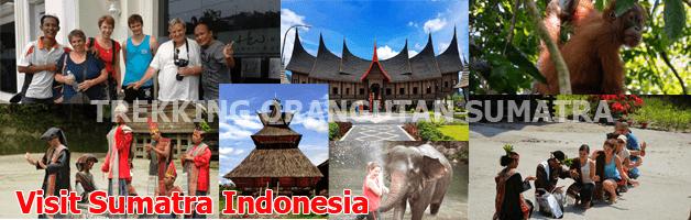 http://www.trekkingorangutansumatra.com/2018/02/ToursSumatra.html