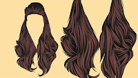 wigs, hair extensions, hair pieces