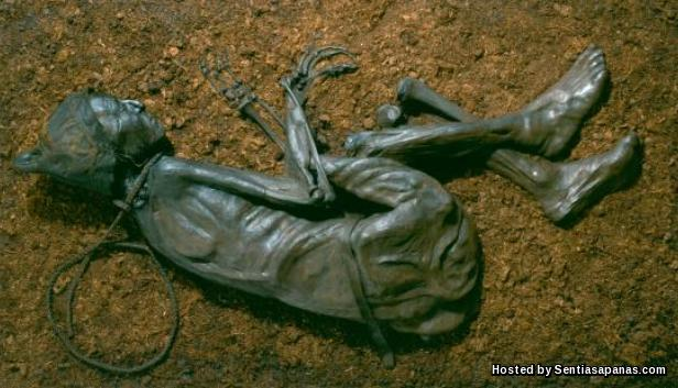 Tollund Man Body