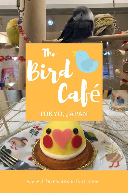 Bird Cafe in Tokyo