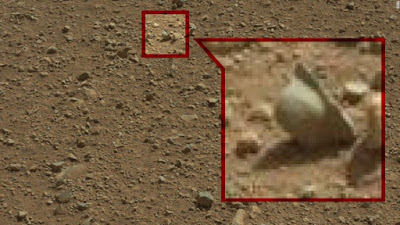 Definite helmet from a war discovered on Mars.