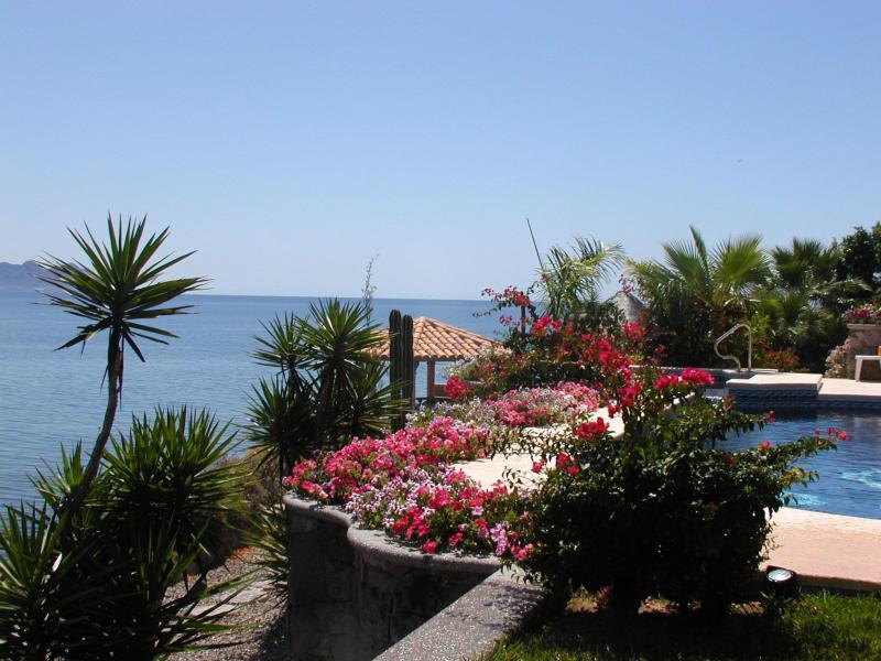 Sancarlosfortin jardin en playas de san carlos sonora for Jardin 81 san carlos