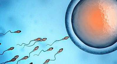 Εφιαλτικό - Το όνειρο και η δυστοπία της ευγονικής. Έτσι θα δημιουργηθούν δύο φυλές ανθρώπων - Σε 30 χρόνια, το σεξ δεν θα είναι... προαπαιτούμενο για τη γέννηση παιδιών