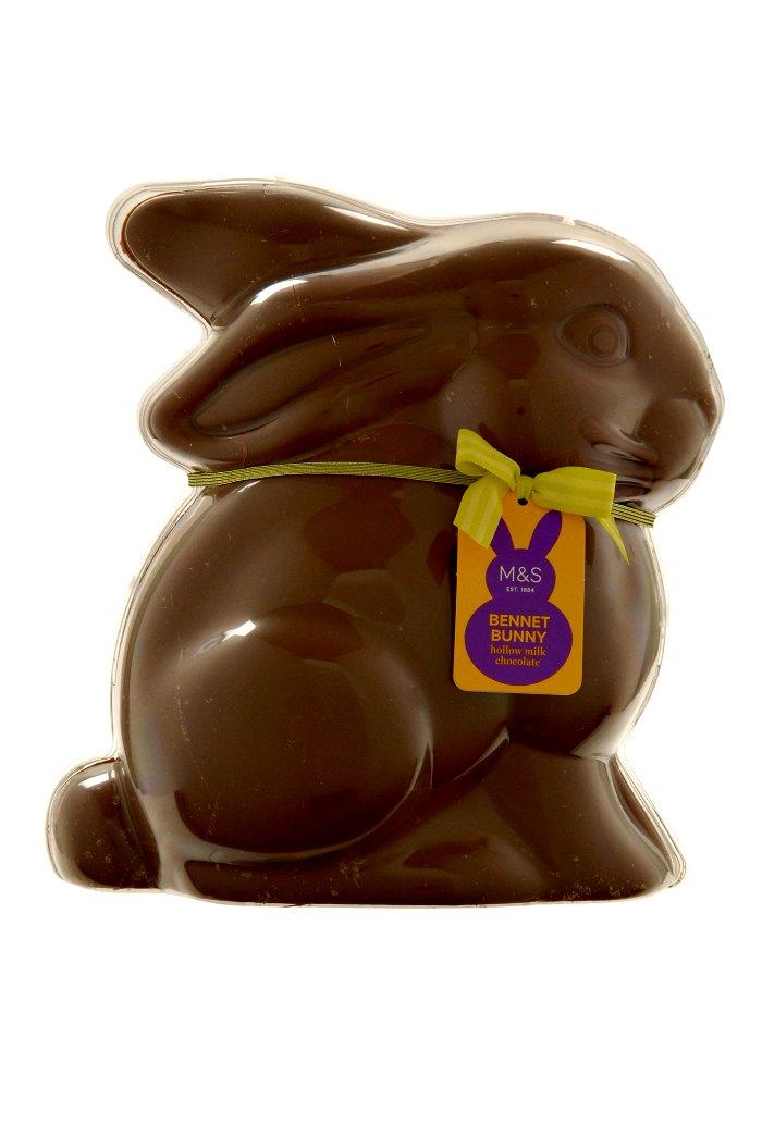 Mr Bennett Bunny