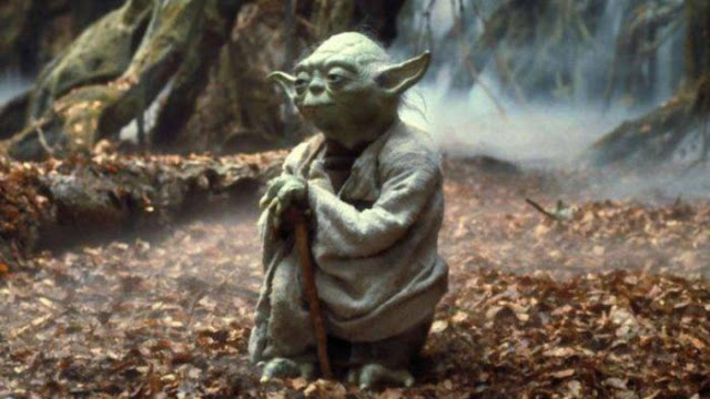 Jedi master Yoda in contemplative pose