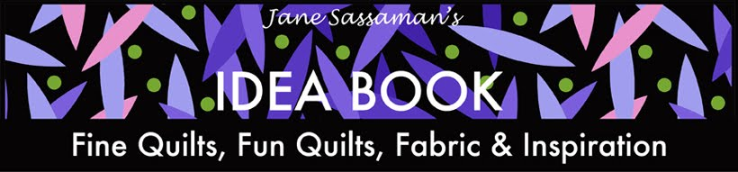 Jane Sassaman's Idea Book