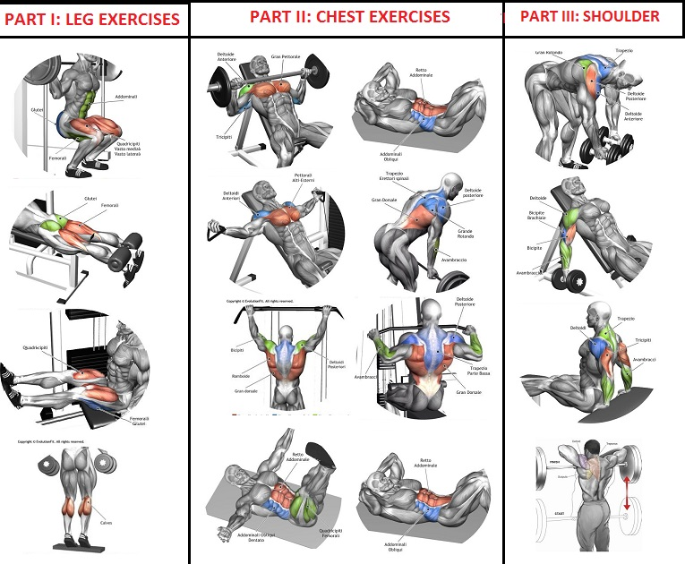 10 Sets of 10 Reps Workout Program For Quick Muscle Building - all ...