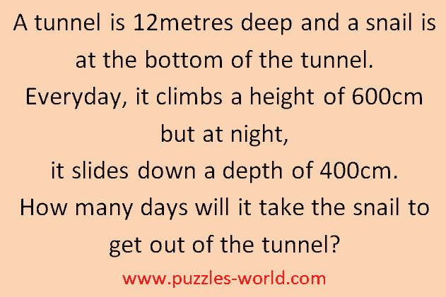 Snail in Tunnel puzzle