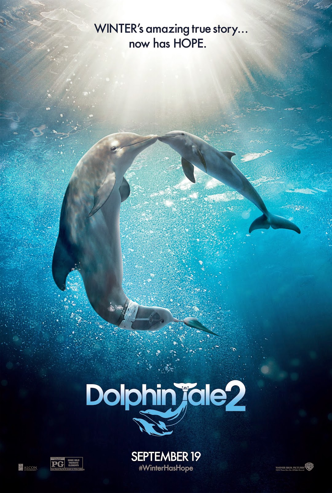 Dolphin Tale 2 movie review by yes/no films
