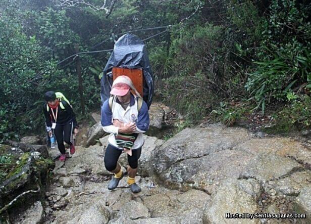 Malim Gunung Kinabalu