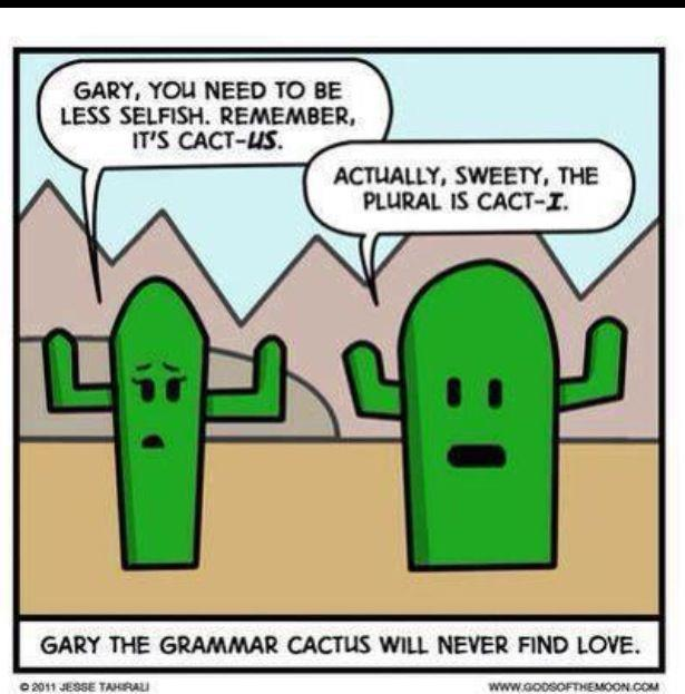 Remember Grammar Lessons Can Come From Everywhere Even Cacti