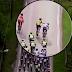 Vídeo de la agresión de Lars Boom en plena etapa del Tour de Noruega 2018