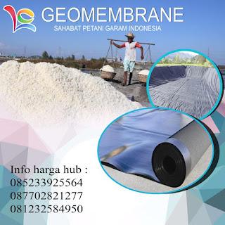 distributor geomembrane,geomembran adalah,geomembran garam,geomembran   hdpe,geomembran surabaya,geomembrane,geomembrane adalah,geomembrane hdpe,harga   geomembran