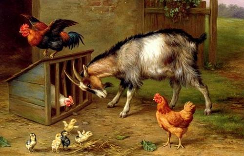 Kümese saldıran keçi tablosu