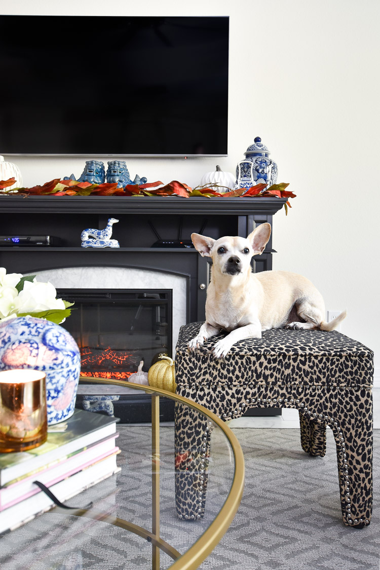 A gray and marble fireplace in a living room is decorated for fall with blue and white ginger jars and a leopard print ottoman.