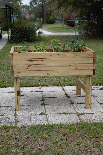 Raised Garden Bed // Pugs & Pearls Blog