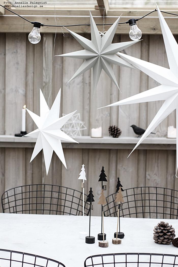 julpynt 2016, julen, jul, advent, annelies design, webbutik, webbutiker, webshop, nätbutik, nätbutiker, Oohh gran, granar, gran på pinne, 3d stjärna, koltrast, fågel, uteplats, trädäck, trädäcket, altan, altanen, house doctor, stjärna, stjärnor, inredning, juldekoration, julpynta, ljusslinga,