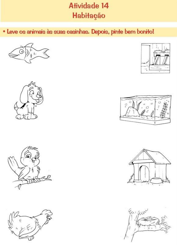 animais e ambientes em que vivem
