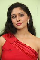 Actress Zahida Sam Latest Stills in Red Long Dress at Badragiri Movie Opening .COM 0089.JPG