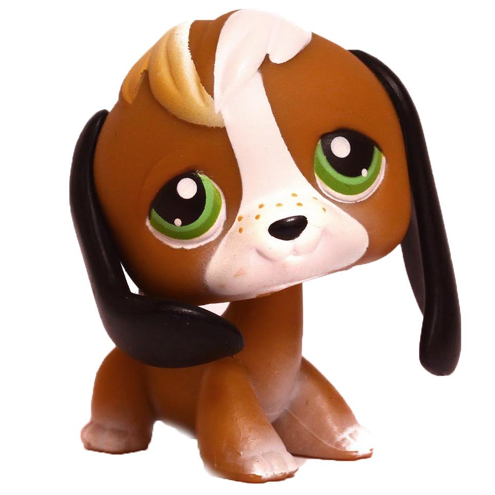 Image Result For Littlest Pet Shop