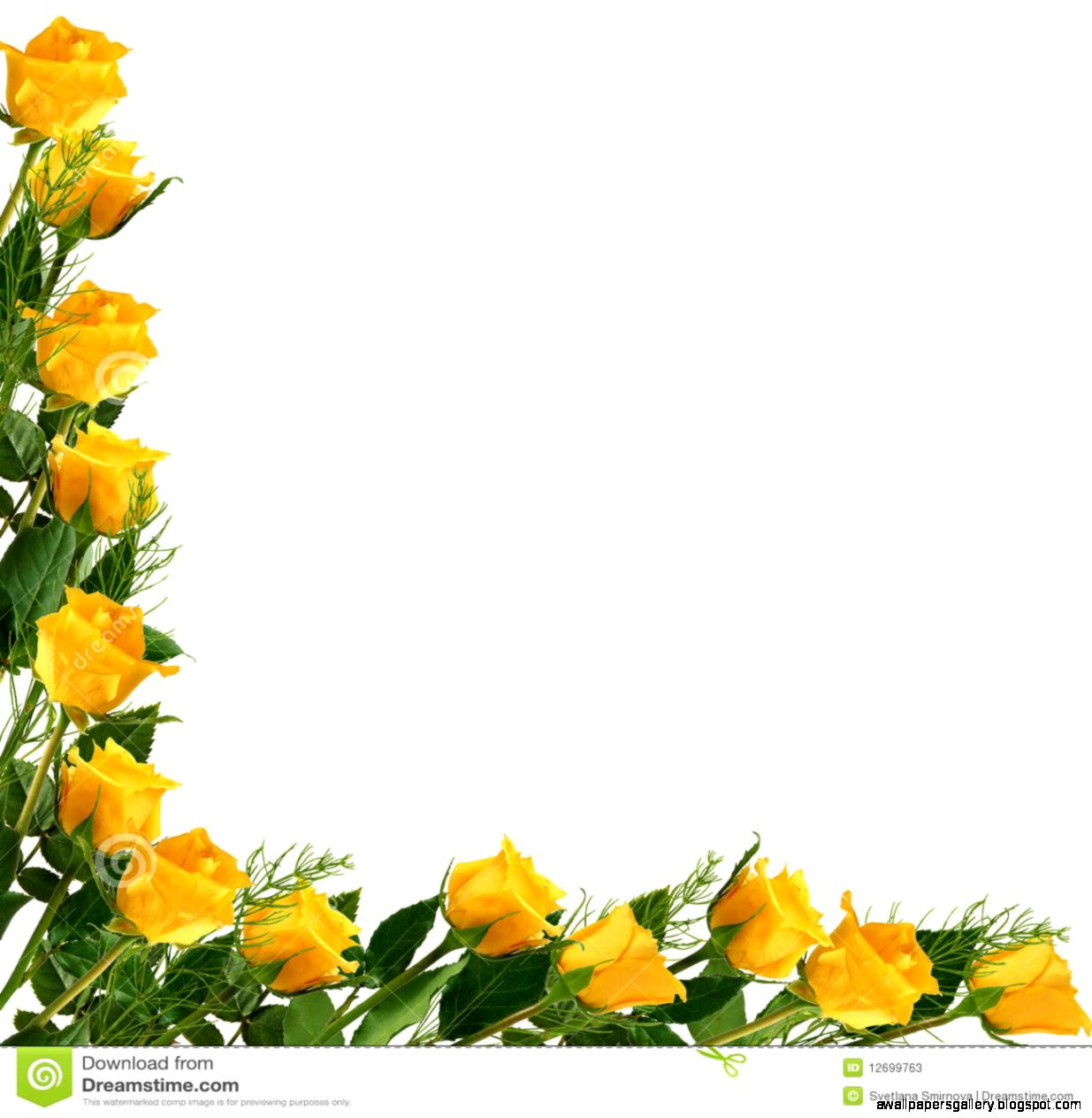 Wallpaper Of Yellow Rose: Wallpapers Gallery