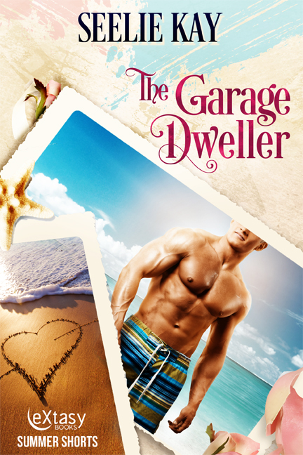 The Garage Dweller cover