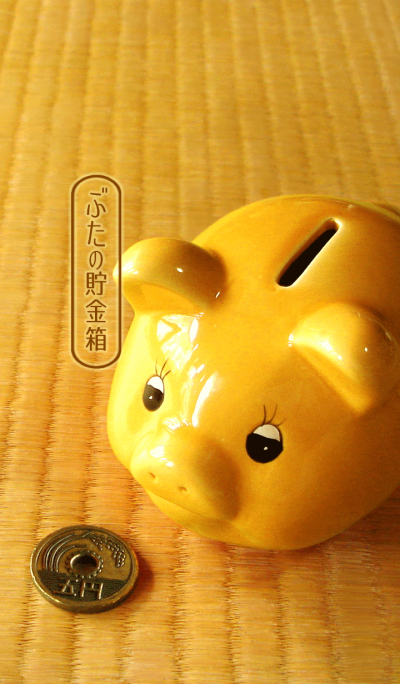 Pig piggy bank.