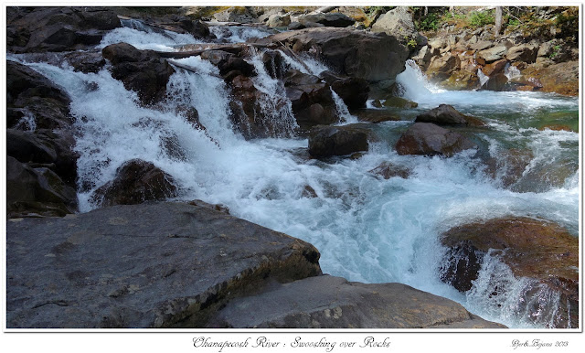 Ohanapecosh River: Swooshing over Rocks
