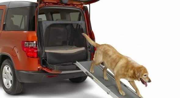 rampas para cães em veiculos