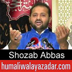 https://www.humaliwalyazadar.com/2019/03/shozab-abbas-manqabat-2019.html