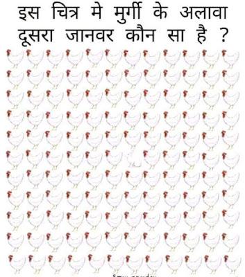 eye test picture animals: Is Chitra Me Murgi Ke Alawa Dusra Janwar Kon sa hai