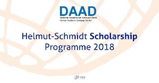 kuliah gratis di jerman beasiswa daad helmut schmidt programme