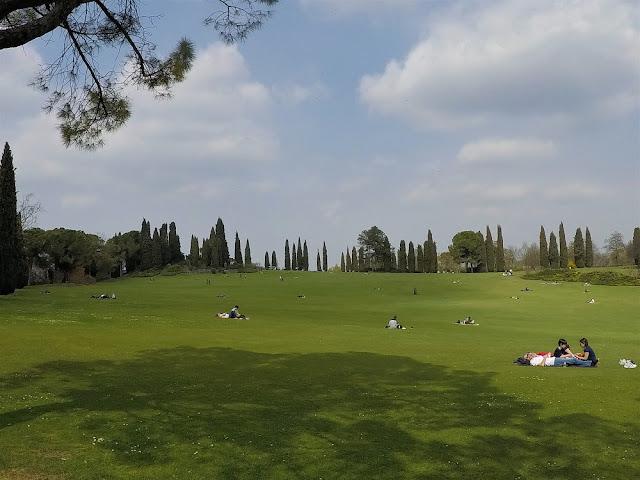 parco giardino sigurtà tappeto erboso