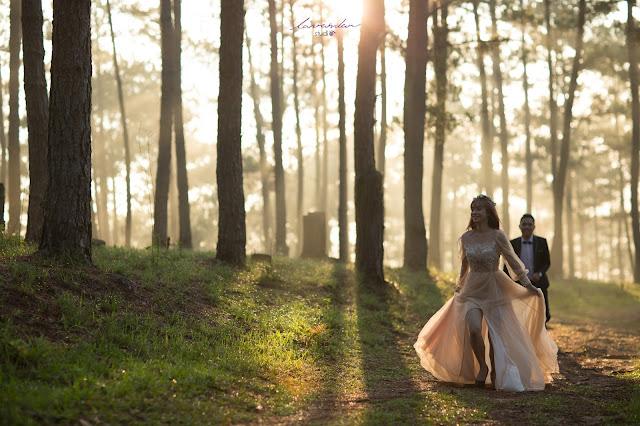 chụp hình cưới đẹp tại đà lạt