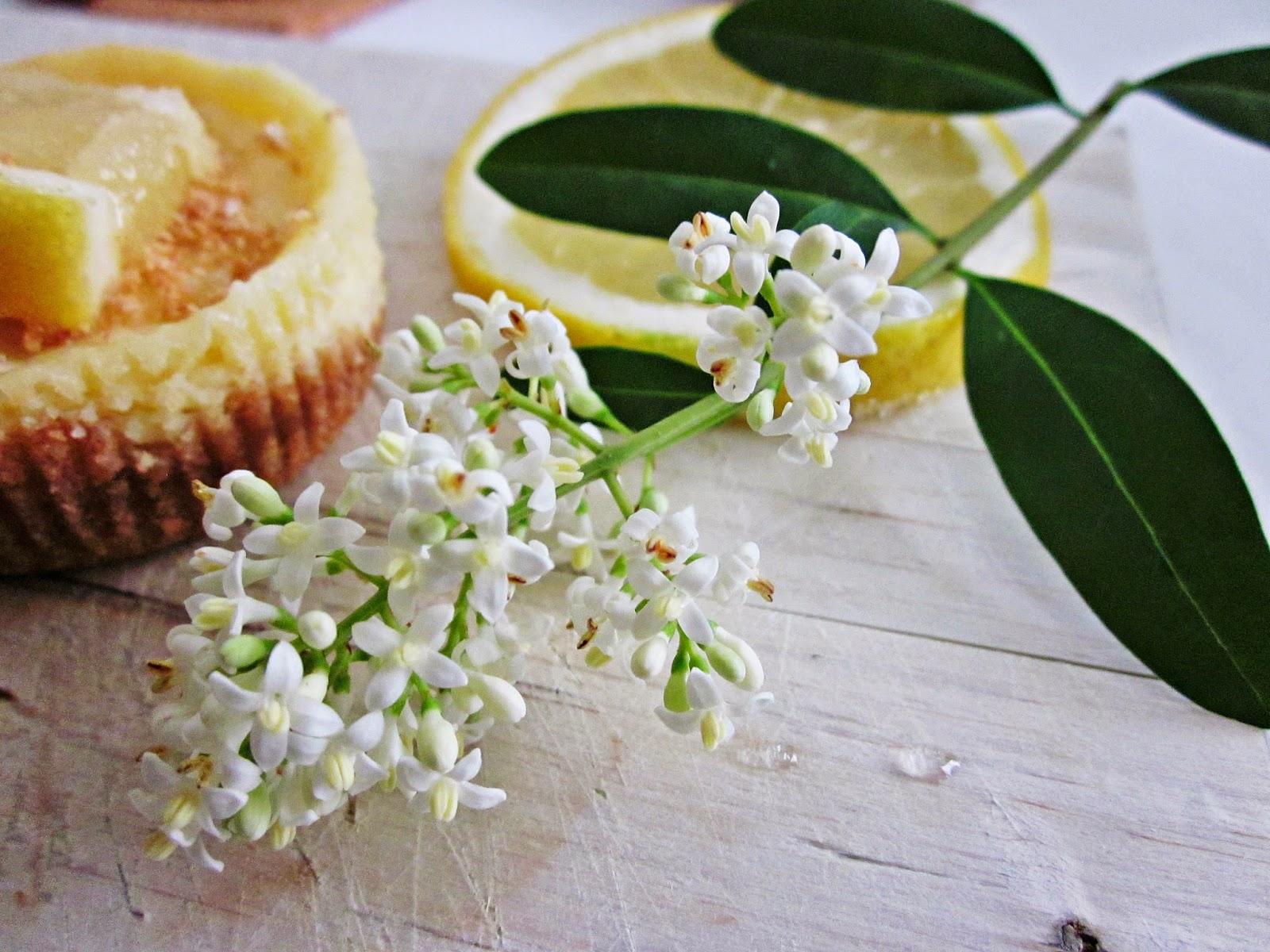 Zitronen-Cheesecakes mit Holunderdeko
