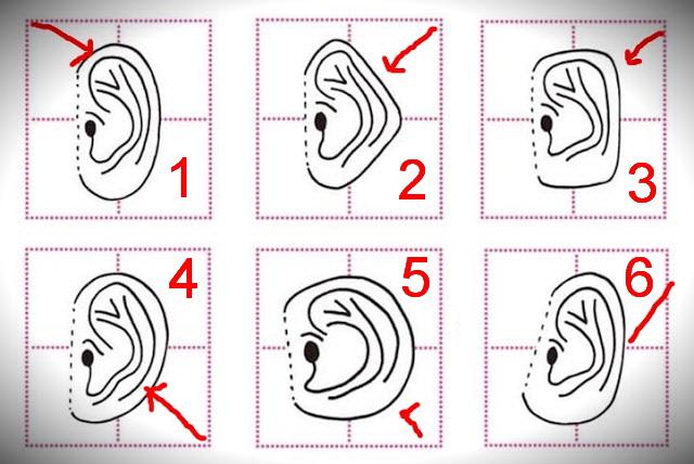 forma urechii arata personalitatea ta