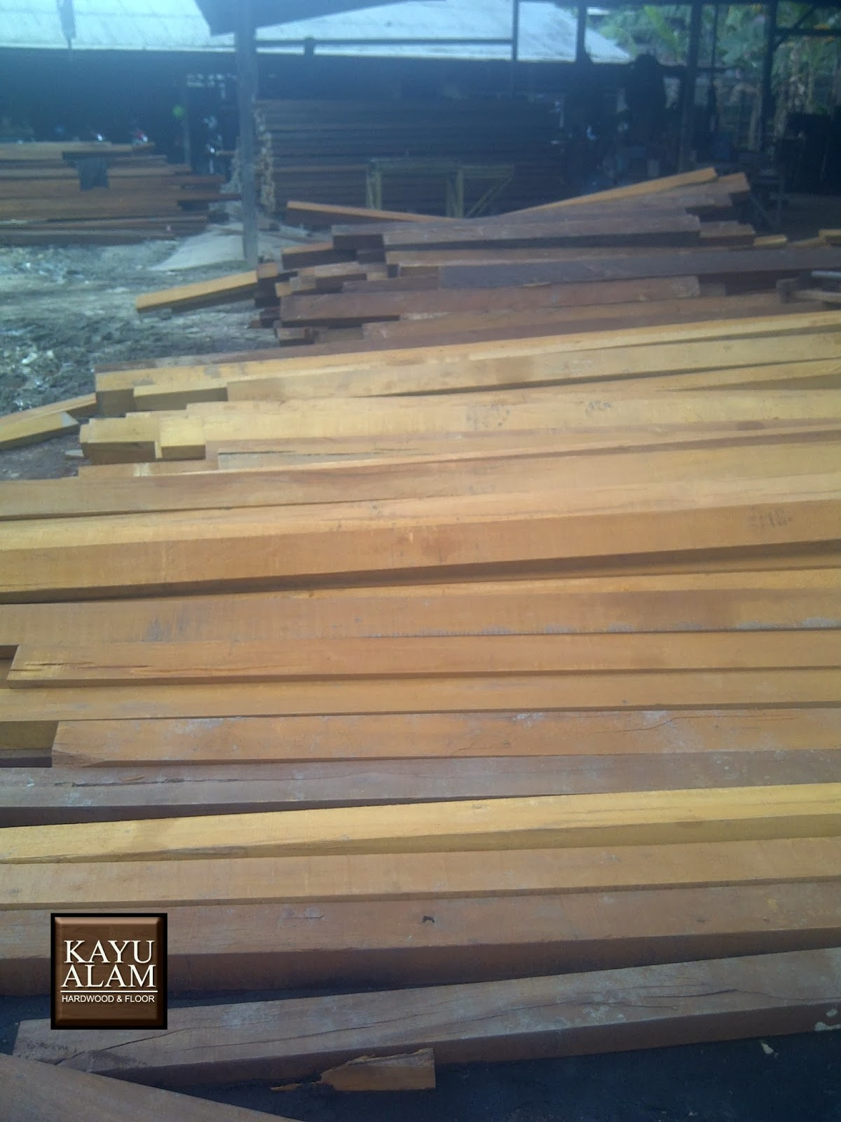 Saw Timber Kayu Ulin