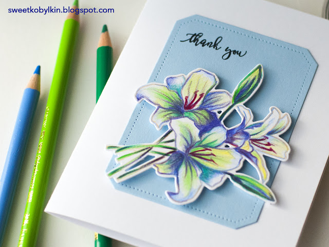 Polychromos Pencils Coloured Spring Card