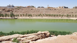 The river even has fish to catch in Riyadh